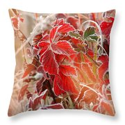 Kissed By Jack Frost Throw Pillow