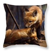 Kit Foxes Throw Pillow by Thomas Young
