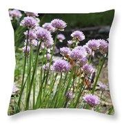 Kitchen Garden Chives Throw Pillow