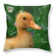 Kitchin & Hurst, Domestic Farm Throw Pillow