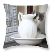 Kitten And The Picther Throw Pillow