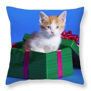 Kitten In Gift Box Throw Pillow