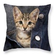 Kitten In Jean Jacket Throw Pillow