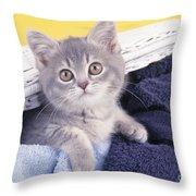 Kitten In Laundry Throw Pillow