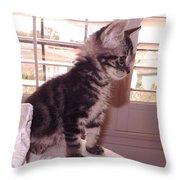 Kitten On Alert Throw Pillow