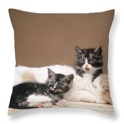 Kittens Lying With Puppy Throw Pillow