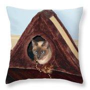 Kitty A-frame Throw Pillow