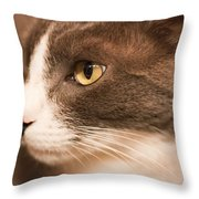 Kitty Boy Throw Pillow