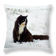 Kitty Cat In The Snow Throw Pillow