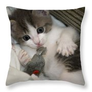 Kitty Claws Throw Pillow