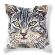 Kitty Kat Iphone Cases Smart Phones Cells And Mobile Cases Carole Spandau Cbs Art 337 Throw Pillow