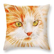 Kitty Kat Iphone Cases Smart Phones Cells And Mobile Cases Carole Spandau Cbs Art 344 Throw Pillow