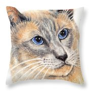 Kitty Kat Iphone Cases Smart Phones Cells And Mobile Cases Carole Spandau Cbs Art 346 Throw Pillow