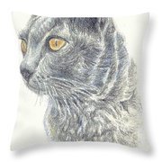 Kitty Kat Iphone Cases Smart Phones Cells And Mobile Cases Carole Spandau Cbs Art 347 Throw Pillow