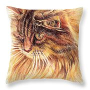 Kitty Kat Iphone Cases Smart Phones Cells And Mobile Cases Carole Spandau Cbs Art 352 Throw Pillow