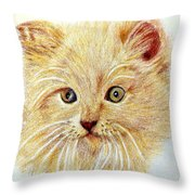 Kitty Kat Iphone Cases Smart Phones Cells And Mobile Phone Cases Carole Spandau 301 Throw Pillow