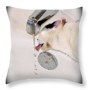Kitty Likes Those Water Drops Throw Pillow