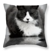 Kitty On A Car Throw Pillow