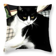 Kitty On His Perch Throw Pillow