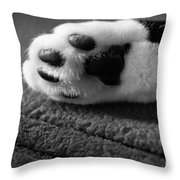 Kitty Paw Close Up Throw Pillow