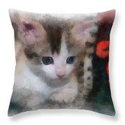 Kitty Photo Art 01 Throw Pillow