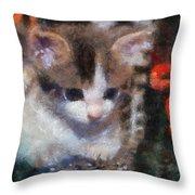 Kitty Photo Art 02 Throw Pillow