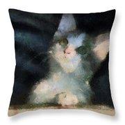 Kitty Photo Art 05 Throw Pillow