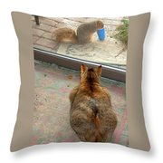 Kitty Watches The Squirrel Throw Pillow