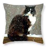 Kittycat In The Snow On The Fence Throw Pillow