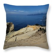 Kiwanda Beach Throw Pillow