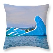 Kneeling Before The Queen Iceberg In Saint Anthony-newfoundland  Throw Pillow