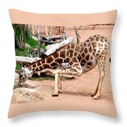 Kneeling Giraffe Throw Pillow