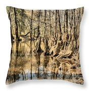 Kneeling On The Edge Throw Pillow