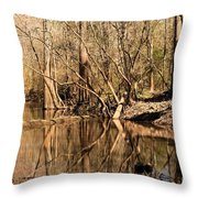 Knees And Reflections Throw Pillow