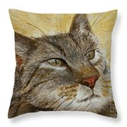 Knowing Look Of Wisdom Throw Pillow