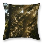 Knowing The Way Throw Pillow