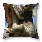 Koala Throw Pillow by Bob Christopher