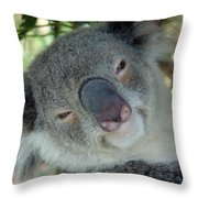 Koala Face Throw Pillow