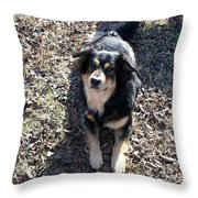 Kody 2 Throw Pillow