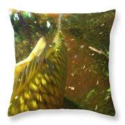 Koi Gold Throw Pillow