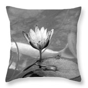 Koi Pond With Lily Pad And Flower Black And White Throw Pillow