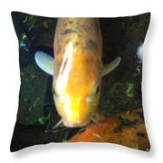 Koi Shine Throw Pillow