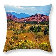 Kolob Terrace Road In Zion National Park-utah Throw Pillow