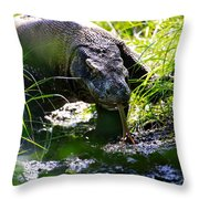 Komodo Island 1 Throw Pillow