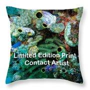 Komodo Island 5 Throw Pillow