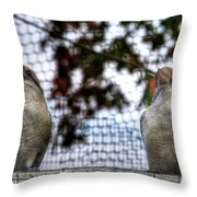 Kookaburra's On Guard At The Buffalo Zoo Throw Pillow