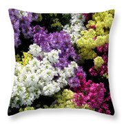 Many Colors Make A Beautiful Garden Throw Pillow