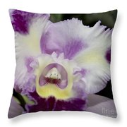 Kristi Leigh Throw Pillow