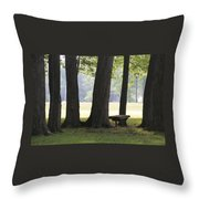 Ksu Ashtabula Campus Park Throw Pillow