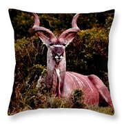 Kudu Bull Throw Pillow